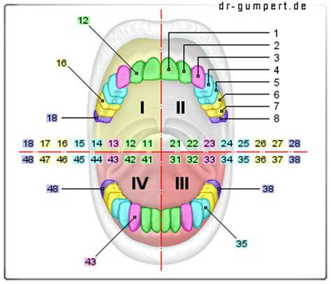 Beschriftung Zahn by Zahn