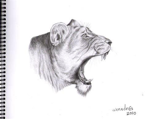 dibujos realistas animales aprende a dibujar animales dibuja f 225 cil identi