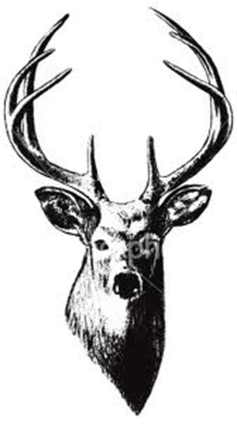 stag head designs stag head tattoo norman ideas pinterest head