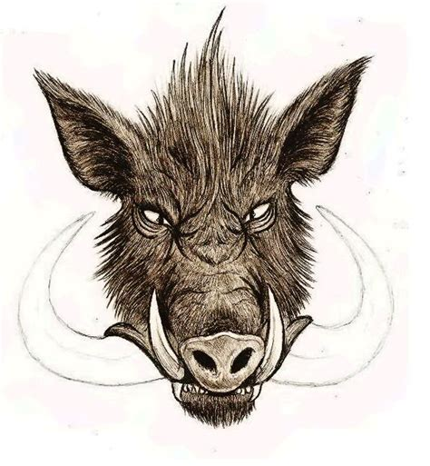 wild boar tattoo designs boar design for
