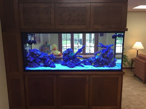 Aquarium Room Divider Aquapros Custom Aquarium At Hospice Of Buffalo New York