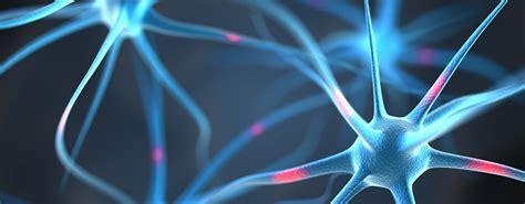 test di biologia molecolare alphagenics biotech sistemi diagnostici in biologia