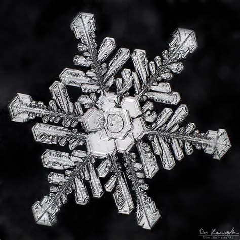 bentley snowflake pictures 404 page not found error feel like you re in the