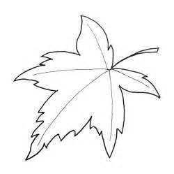 maple leaf template pin maple leaf template on