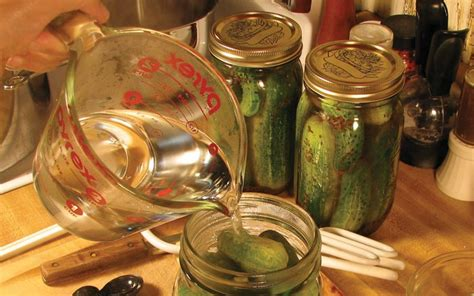 Handmade Pickles - how to make pickles relish at home dill pickle relish