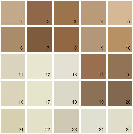 benjamin color swatches brown paint color palette benjamin paint colors