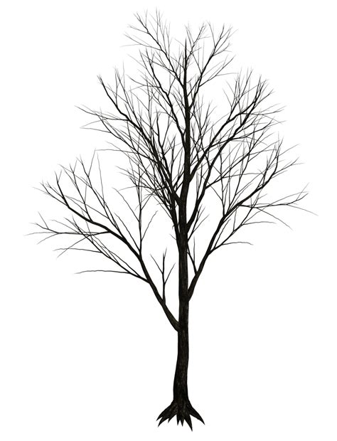 tree tattoo png dark trees png stock 07 by roy3d on deviantart