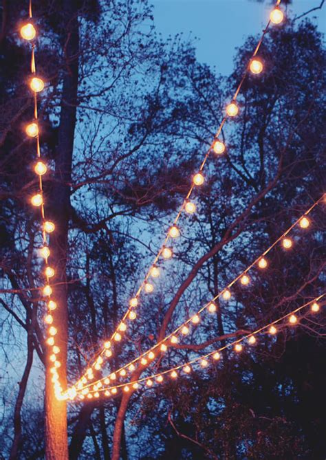 how to string lights on tree branches a canopy of string lights in our backyard gray house studio