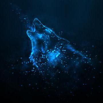 discord nitro free trial release discord wolf theme 183 thatonewolfie discord wolf
