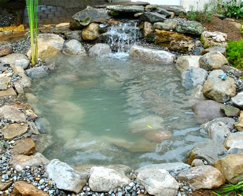 water ponding in backyard backyard pond pondless waterfall and water garden kits home design idea