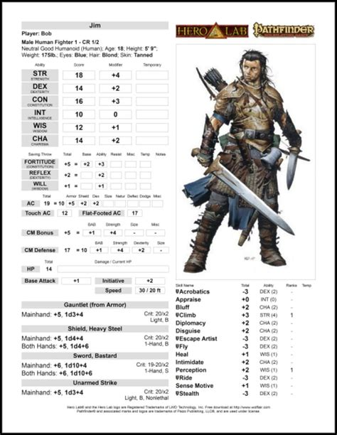 Best Sheets Review by Hero Lab For Pathfinder 7 Out Of 10 But Oh So Close