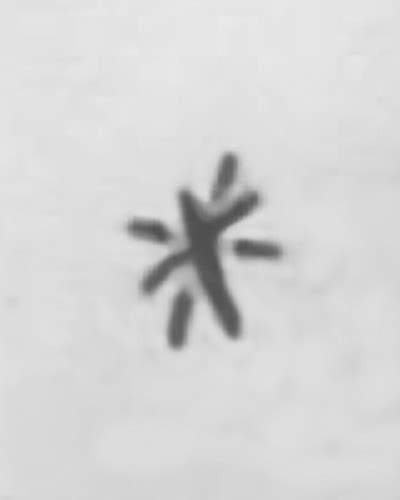 tattoo cross with three dots who is valentine doe