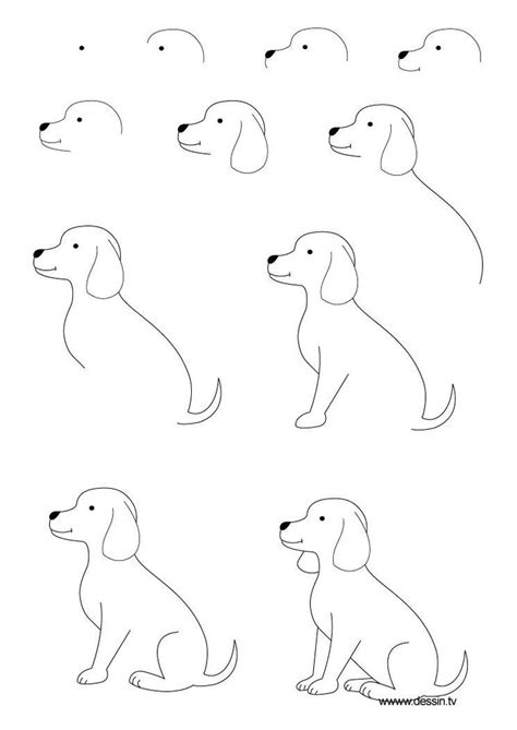 Easy Things To Draw Step By Step by Easy Drawing Dogs Step By Step Drawing Coloring
