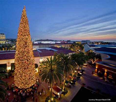 california christmas tree ceremonies and displays