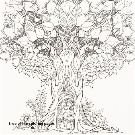 trunk coloring page images