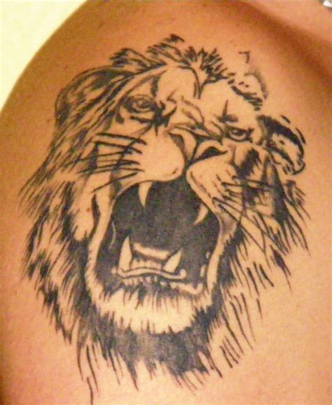 tattoo pictures of lions lion tattoos designs ideas and meaning tattoos for you