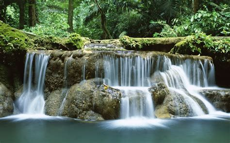wallpaper dinding nature beauty thailand s natural beauty wallpapers 10 1280x800