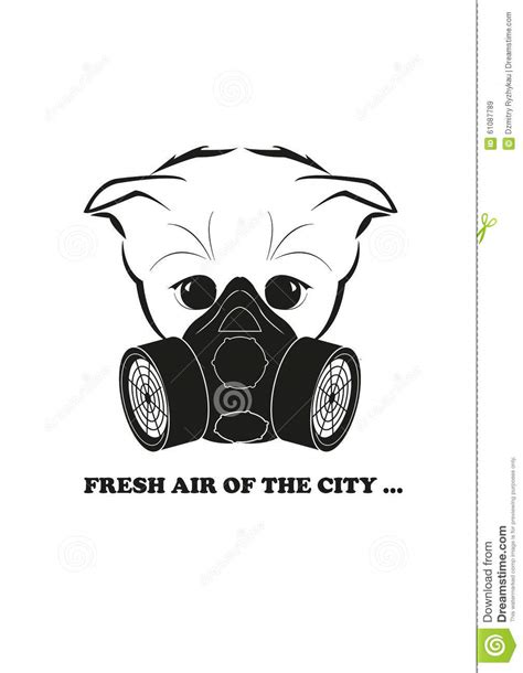 Cat Fresh Air Mask totono and gas mask fresh air of the city stock