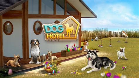 dog hotel lite simulator android mobil gameplay video