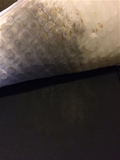 Mold Mattress Cleaning by Mold On Mattress Picture Of Embassy Suites By