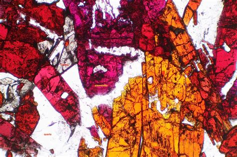 Piemontite Thin Section by Photomicrographs Fkm 21 To Fkm 40 Rockptx