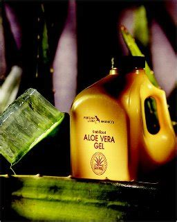 Aloe Vera Detox For Birds by Healthy Lifestyle Forever Living Page 2