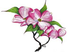 Awesome Flower Pictures - dogwood flower clipart
