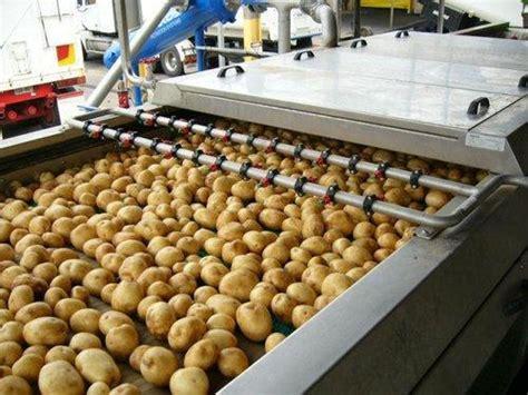 global potato global potato processing market 2017 weston