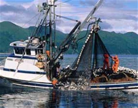 fishing boat jobs seattle washington fishing boat deckhand jobs alaska job in alaska