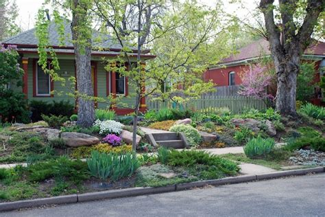 front lawn alternatives firstplace pinterest
