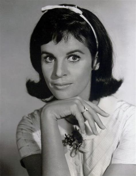 claudine longet now latest pictures of claudine longet bing images