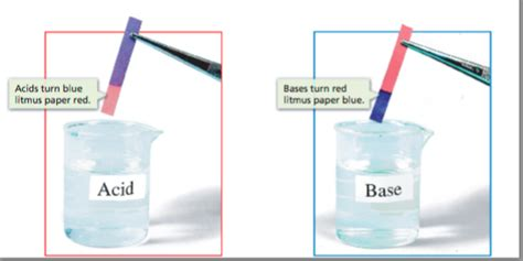 Bases Make Litmus Paper Turn - litmus paper acid www pixshark images galleries