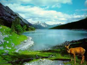 amazing nature pictures beautiful nature wallpaper amazing wallpapers