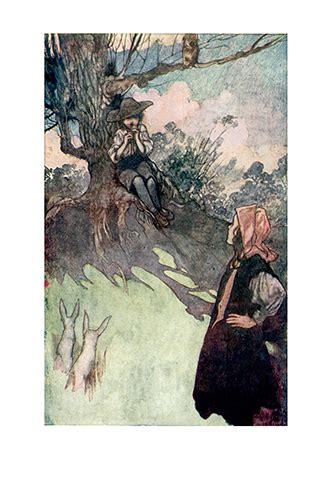 the secret garden illustrated books the secret garden illustrated by charles robinson