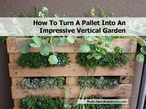 Vertical Garden Pallet How To Turn A Pallet Into An Impressive Vertical Garden