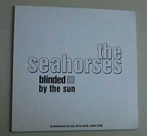 Blinded By The Sun seahorses blinded by the sun records lps vinyl and cds musicstack