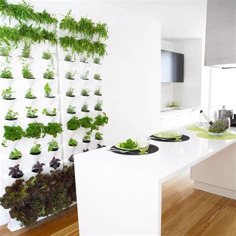 pflanzenwand selber machen gr 252 ne wand raffinierter blickfang f 252 r die wohnung bauen de