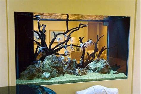 freshwater angelfish tank fish tank decorations