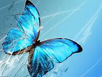 Tag Blue Butterfly Art Wallpapers Backgrounds PhotosImages And