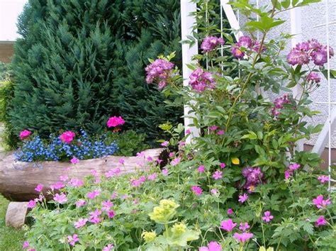 meine schöne garten ohne dornen bioland hof jeebel biogartenversand
