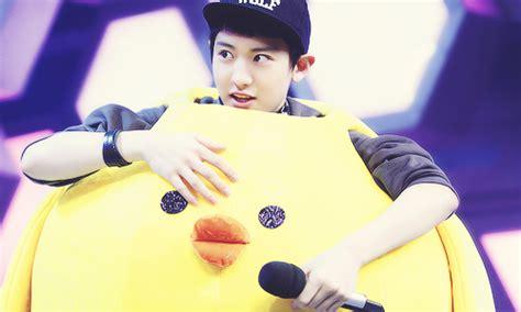 cute exo themes h exo mo
