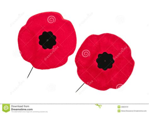 remembrance day poppies stock image image 28803191
