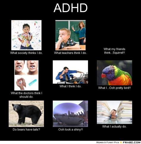 Adhd Meme - what society thinks i do meme