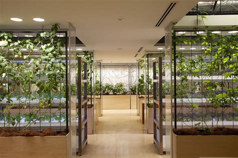 tokyo office brings  meaning  healthy office
