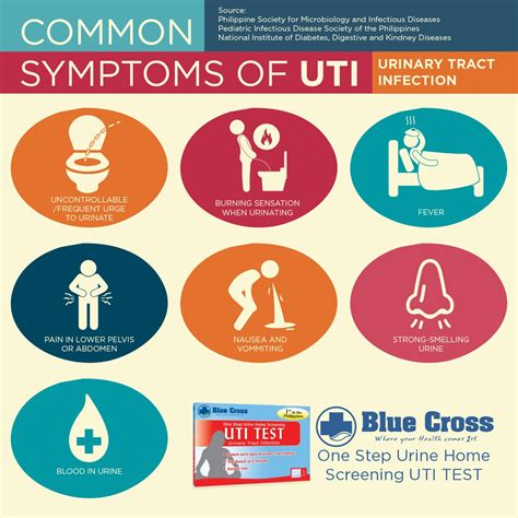 bladder infection symptoms what you need to about uti and how you will prevent it