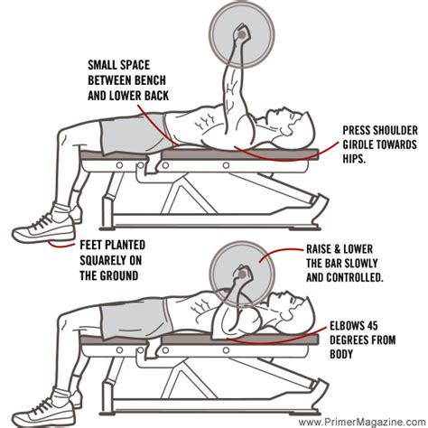 bench press diagram 8 common errors in 8 common exercises primer
