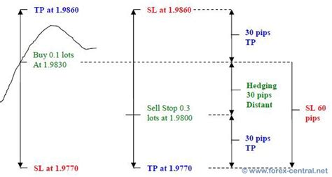forex hedging tutorial trading online with swing forex strategy combined with