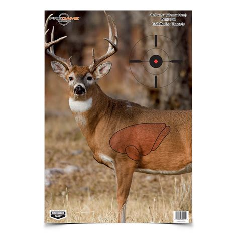Printable Whitetail Deer Targets | the gallery for gt whitetail deer vitals target