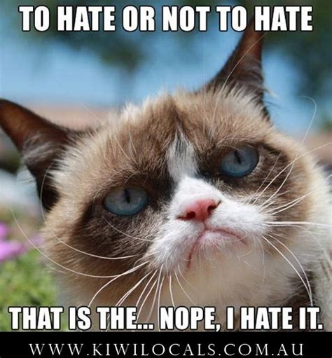 Grumpy Cat Meme Clean - tags grumpy cat lol funny tard clean memes to be or not