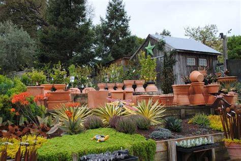 cottage garden petaluma ca favorite places spaces - Cottage Gardens Of Petaluma